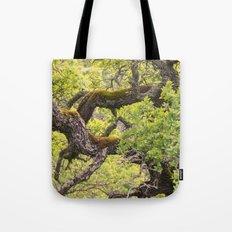 Gnarled Tote Bag