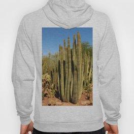 Organpipe Cactus Hoody