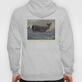 Vintage Sperm Whale Painting (1909) Hoody
