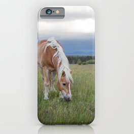 Blonde Beauty iPhone Case