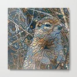 Find the Denali Ground Squirrel Metal Print