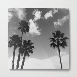 B&W Palms Metal Print