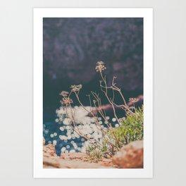 Sparkling Day Art Print