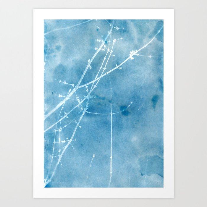 Nature's Graphics Blue Cyanatope Print Art Print