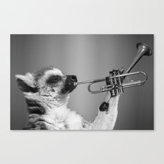 Musical Lemur Canvas Print