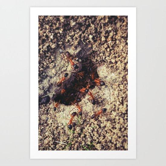Ants Art Print