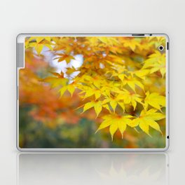 Japanese maple in yellow and orange Laptop & iPad Skin