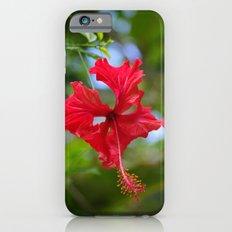 Scarlet Flower Slim Case iPhone 6s