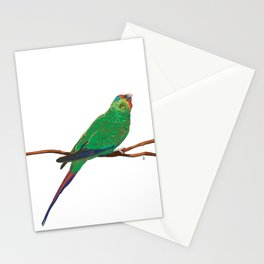 Swift Green Parrot Stationery Cards