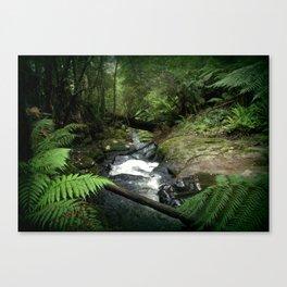 Cool Stream Canvas Print