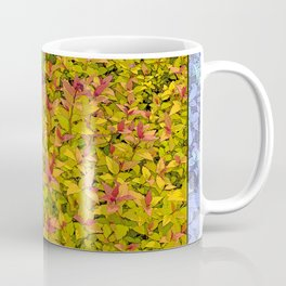 SPIRAEA MAGIC CARPET Coffee Mug