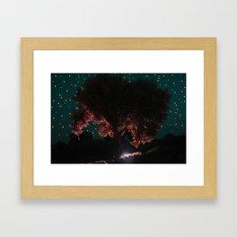 Olive Tree | Niarchos Foundation Cultural Center | Framed Art Print