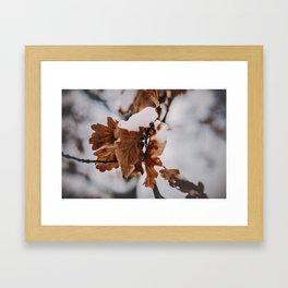 _DSC7044 Framed Art Print