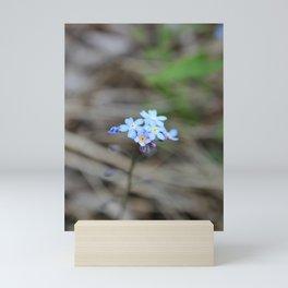 Many Forget-Me-Nots Mini Art Print