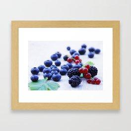 Fresh wild berries, blackberries, blueberries and currants in still life Framed Art Print