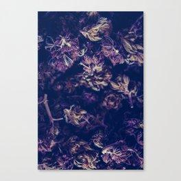 A macro photo of a bunch of cannabis kush Canvas Print