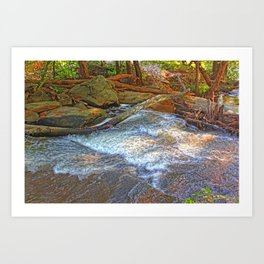 Rock, Wood, Waters Art Print