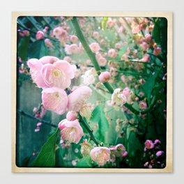 Bloom2 Canvas Print
