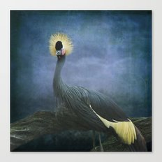 Crowned Crane Canvas Print