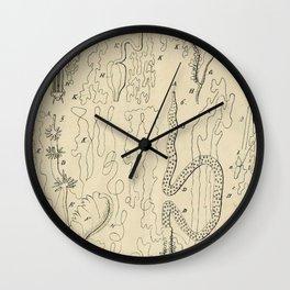 Microscopic Biology Wall Clock