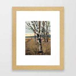 Conboy Lake 16 x 20 Framed Art Print