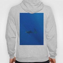Hawaiian Shark VIII Hoody