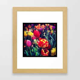 Vanitas Tulips Framed Art Print