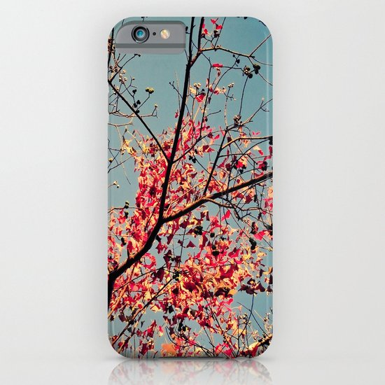 Autumn Branch & Leaves iPhone & iPod Case