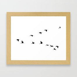 Silhoutte birds picture Framed Art Print
