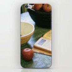 Cà d'Zan iPhone & iPod Skin