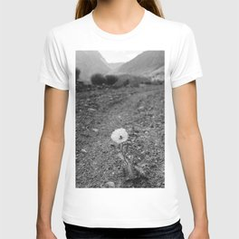 Monochrome Yosemite Bloom T-shirt