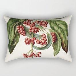 Antique plant Coprosma australis - Kanono drawn by Sarah Featon (1848-1927) Rectangular Pillow