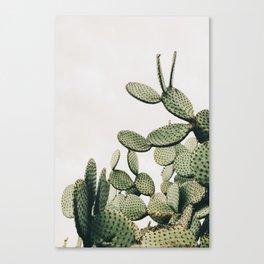 Cactus on blue sky #society6 #decor #buyart Canvas Print