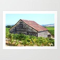Wine Country Sonoma Art Print