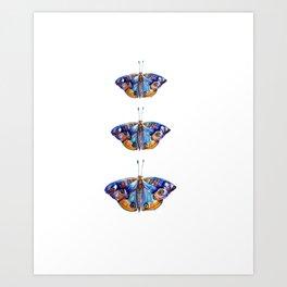 Watercolor Butterflies Butterfly Art Art Print