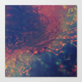 Mixed Feelings Canvas Print