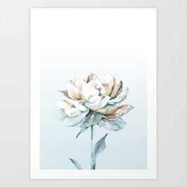 Peony I Art Print