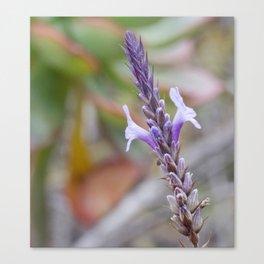 Lilac Symmetry Canvas Print