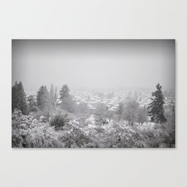 Cold Houses Canvas Print
