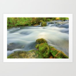 Missouri Mossy River Landscape Art Print
