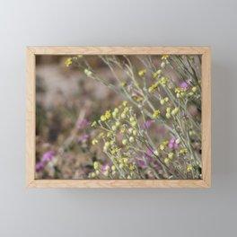 Desert Wildflowers and Gnat Coachella Preserve Framed Mini Art Print