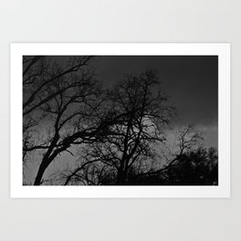 Reaching Towards A Dark Sky Art Print