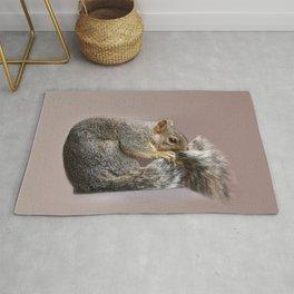 Shy squirrel Rug