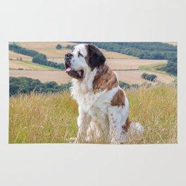 St Bernard dog Rug