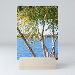Sailing through the Birch Mini Art Print