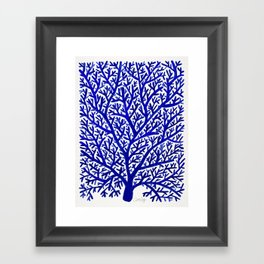 Fan Coral – Navy Framed Art Print