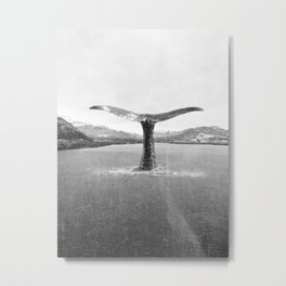 Whale In A French Lake in Black And White Metal Print