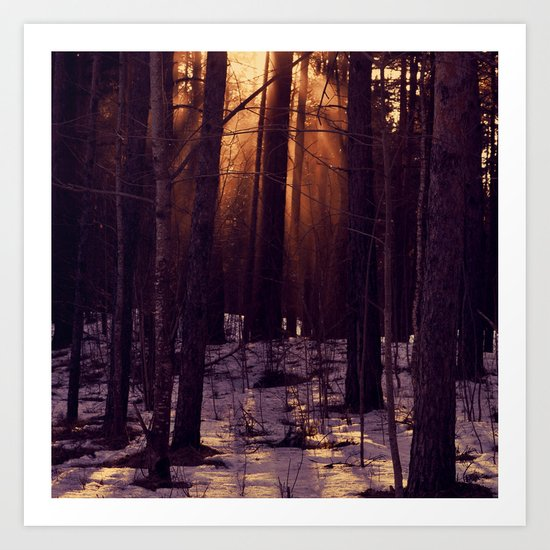 Sunset in the evening Art Print