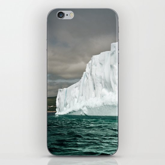 Northern Visitor iPhone & iPod Skin