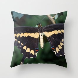 Butterfly wings open Throw Pillow